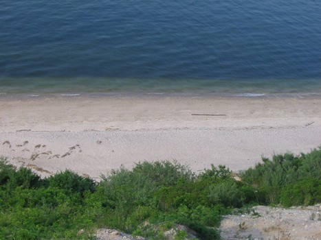 View of Beach from top of Cliffs